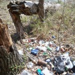 And reason #3 why we do the cleanups